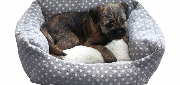 Compare Prices Of Dog Beds Read Dog Bed Reviews Amp Buy Online