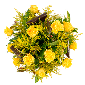 flowers roses yellow. Yellow Roses - flowers