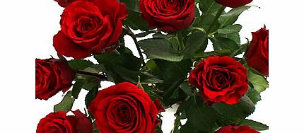 Amore - Red Roses with Chocolates and