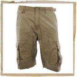 Animal Moth Cargo Short Fossil
