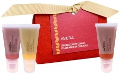 CELEBRATE WITH COLOUR GIFT SET (3 PRODUCTS)
