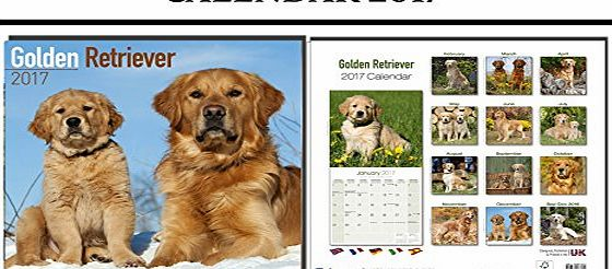 AVONSIDE GOLDEN RETRIEVER DOGS CALENDAR 2017