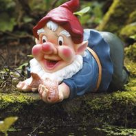 Bermuda Pond Gnome - Caught in the Act
