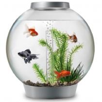 Bio Orb Fish Tanks