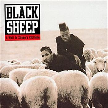 black-sheep-a-wolf-in-sheeps-clothing.jpg