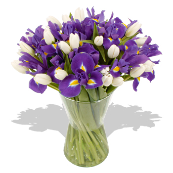 Blue Irises and White Tulips Bouquet - flowers