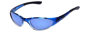 Swisher (Polarised) sunglasses