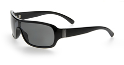 WHIP BLACK FRAME - POLARIZED SMOKE LENS
