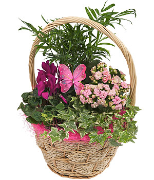 Bunches.co.uk Butterfly Flower Basket PMBASK