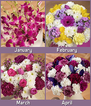 Bunches.co.uk Flowers for a Year FFAY