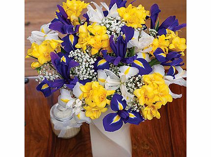 Bunches.co.uk Iris and Freesias Large FIRFRL