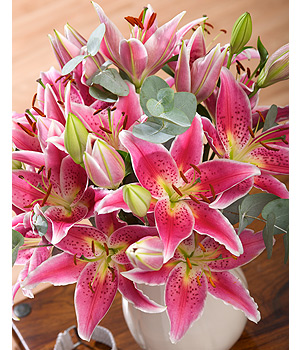 Bunches.co.uk Lily Scentsation FLILY