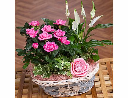 Bunches.co.uk Rose and Lily Flower Basket PRLFB