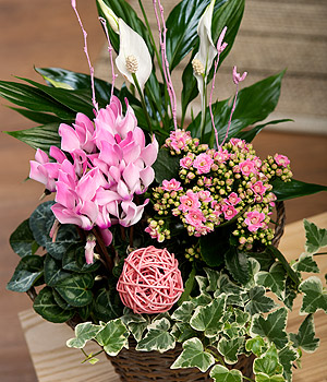 Bunches.co.uk Spring Flower Basket PSFB