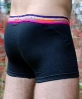 Calvin Klein CK Striped Waistband Trunk product image