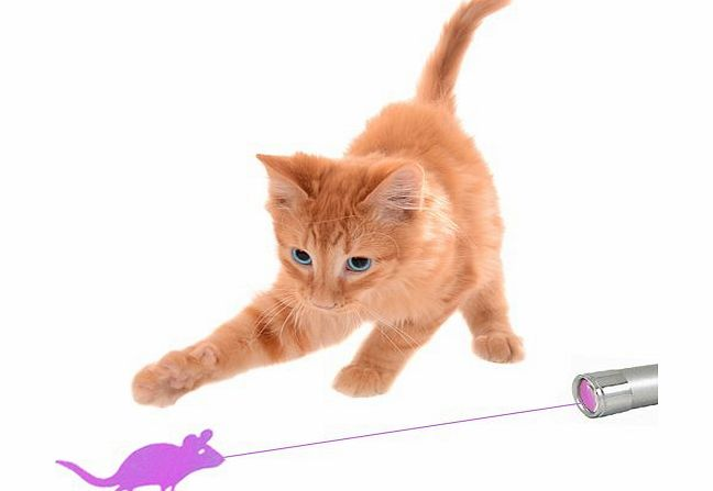 CatPlay The Ultimate Fun Cat Laser Toy With A Bright Mouse Animation For Easy Visibility
