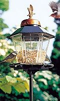 Classic Coach Lamp Bird Feeder with Free Window Feeder