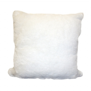 Changing Moonlight Cushion