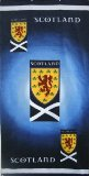 Coombe Shopping Scotland F.A. Beach Towel product image