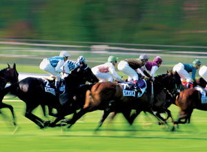 discovering horse racing (for two) - CLICK FOR MORE INFORMATION