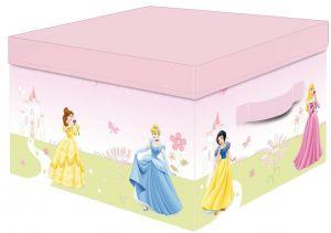 Princess Storage Box