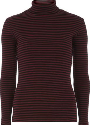 Dorothy Perkins, 1134[^]262015000714193 Womens Cranberry Stripe Roll Neck top- Black
