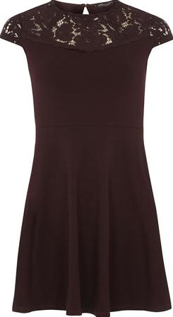 Dorothy Perkins, 1134[^]262015000707102 Womens Raisin Lace Front Dress- Purple DP56449572