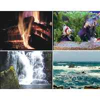Screen Saver - Aquarium & Fireplace Set