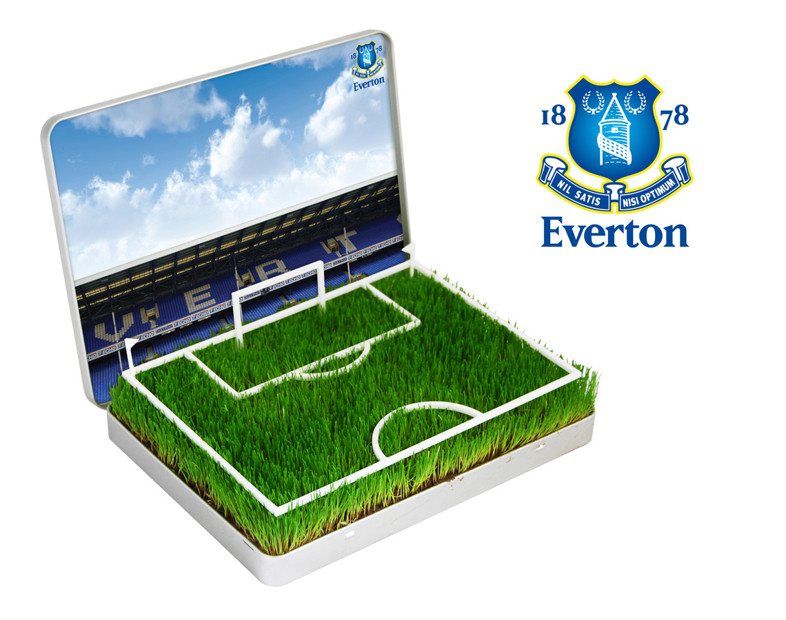 Everton  Grow Your Own Everton Goodison Park Pitch product image
