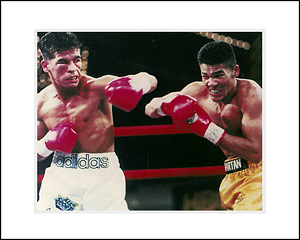 FamousRetail Gatti v Rodriguez unsigned 8x10 colour photo