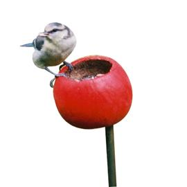 Bed Cup Feeders - CLICK FOR MORE INFORMATION