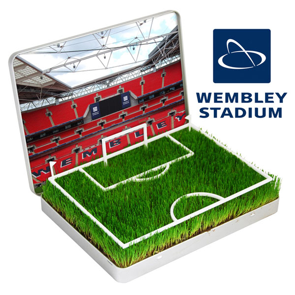 grow your own Mini Football Pitch Wembley