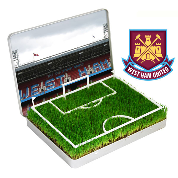 grow your own Mini Football Pitch West Ham