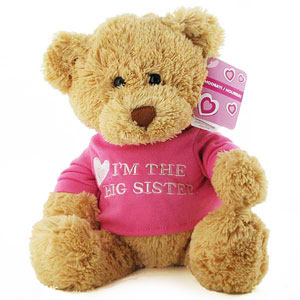 Im the Big Sister Teddy Bear