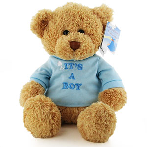Gund Its a Boy Teddy Bear