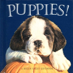 This Puppies book is a useful and attractive gift book written by Helen Exley.The book is illustrate - CLICK FOR MORE INFORMATION