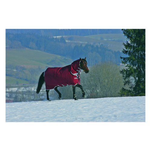 horseware horse products. Black Bedroom Furniture Sets. Home Design Ideas
