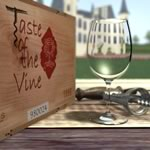 Interactive Wine Tasting Course