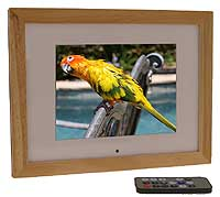 Up to 10% off Digital Frames Direct Coupon, Promo Code ...