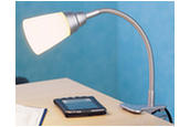 30621 / Clip-on Desk Light