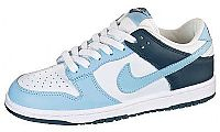 Nike Ladies Dunk Low CL Training Shoes