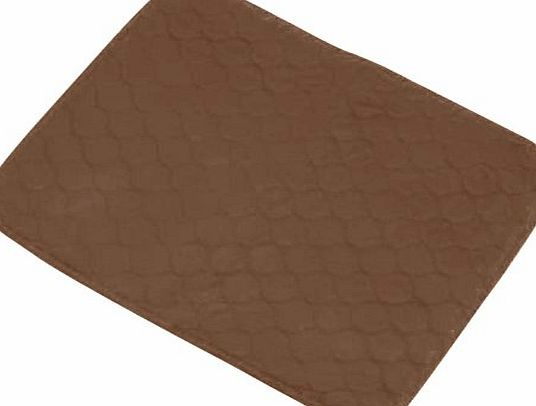 NRS Healthcare M35951 Incontinence Protection Chair Pad - Brown