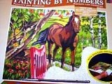 Oasis Reeves - Painting By Numbers Senior Acrylic Horse product image