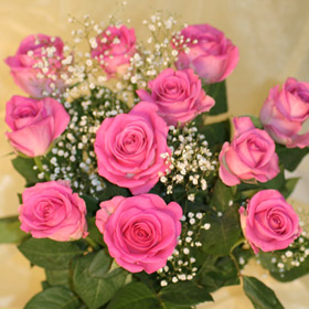 Roses with Gypsophilia