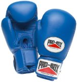 Blue Sparring Gloves Senior 14oz