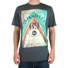 Quiksilver Mens Quiksilver Point Break Organic Tee Raveb product image