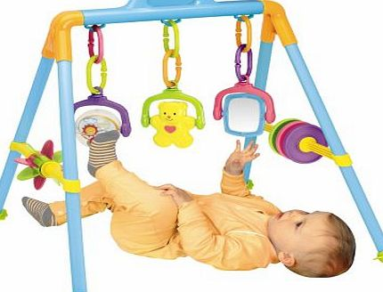 Redbox Activity Play Gym - Richmond Toys product image