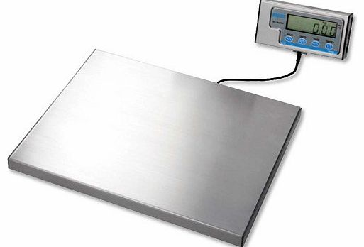 Salter Kitchen Scales Reviews