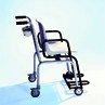 Seca 958 Digital Chair Scale product image