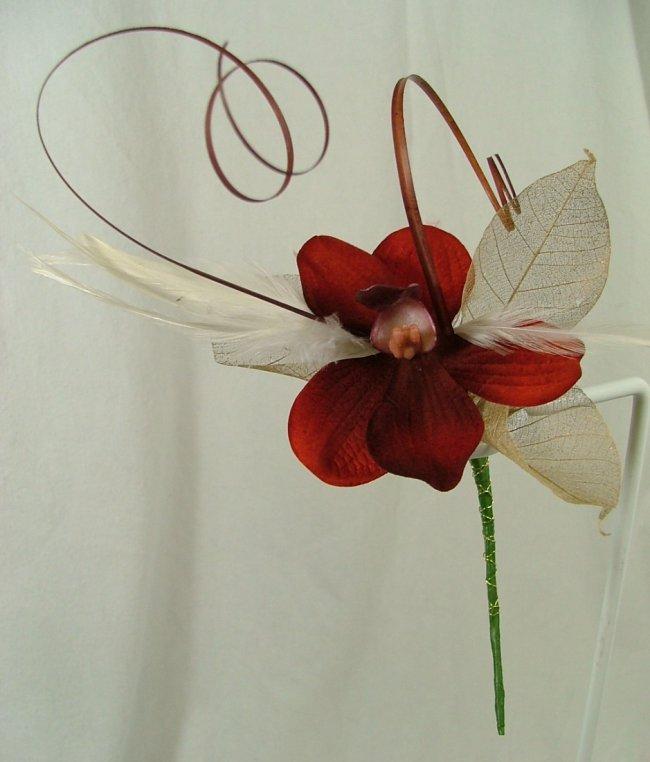Orchidaceae  Wikipedia